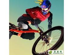 Bike Unchained中文译名: 极限